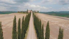 路的看法在针叶树之间的 在路末端是房子 寄生虫上升 意大利,托斯卡纳 股票录像