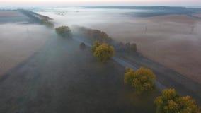 路的美好的鸟瞰图有驾驶的汽车,早晨领域用雾包括在日出 乌克兰 股票录像