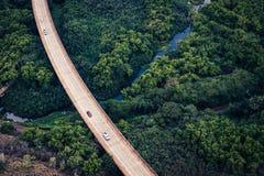 路的鸟瞰图在豪华的绿色森林,考艾岛,夏威夷里 免版税图库摄影