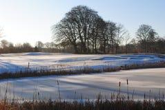 路线冻结的高尔夫球 免版税图库摄影