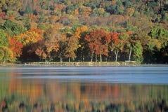 路线的150 NH Lovell湖在秋天 免版税库存图片