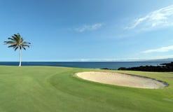 路线高尔夫球夏威夷人 免版税库存照片