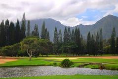 路线高尔夫球夏威夷考艾岛 免版税库存照片