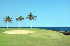 路线高尔夫球夏威夷 免版税库存照片