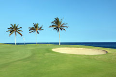 路线高尔夫球夏威夷 库存照片