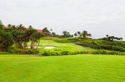 路线高尔夫球棕榈树 免版税库存照片