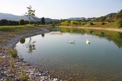 路线高尔夫球池塘 库存图片