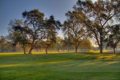 路线高尔夫球绿化hdr 免版税图库摄影