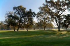 路线高尔夫球绿色 库存照片