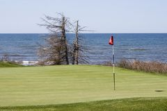 路线高尔夫球绿色 免版税图库摄影