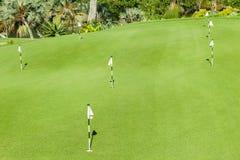路线高尔夫球绿色放置 库存照片