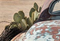路线66路旁艺术,亚利桑那沙漠 库存图片