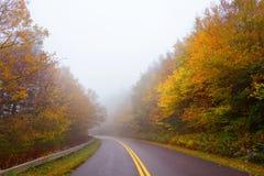 路绕通过美好的有雾的秋天森林风景 库存照片
