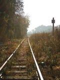 路轨进入雾 库存照片
