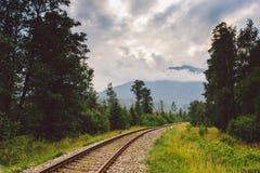 路轨,铁路,山,斯洛伐克,用栏杆围舒展对天际 图库摄影