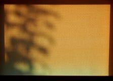 路辗窗帘,与阴影 图库摄影