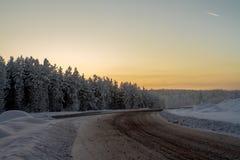 路通过一个多雪的森林 库存图片