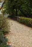 路通过叶茂盛庭院 免版税库存照片