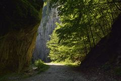 路通过峡谷 免版税库存照片