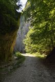 路通过峡谷 库存图片