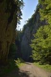 路通过峡谷 免版税库存图片