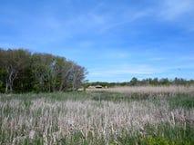 水路通过有历史的堡垒电池的Steele森林在距离 免版税库存照片