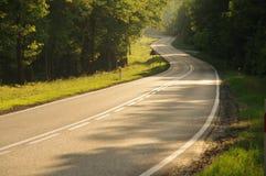路通过森林。 免版税库存照片