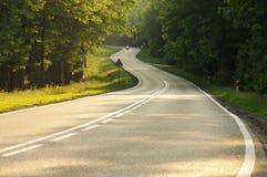 路通过森林。 免版税图库摄影