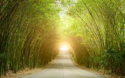 路通过竹子隧道  库存图片