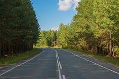 路通过绿色深森林在俄罗斯 免版税图库摄影
