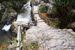路通过datanla瀑布的, dalat,越南森林 库存图片