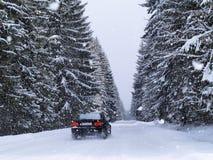 路降雪 库存照片