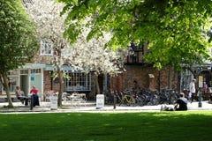 路面咖啡馆在约克,英国 库存照片