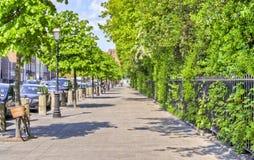 路面在圣斯蒂芬的绿色旁边的都伯林 库存照片