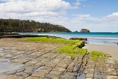 路面棋盘格的塔斯马尼亚岛 库存图片