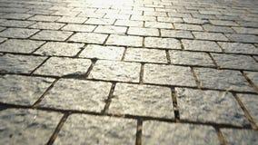 路面由石头制成 美丽的庭院走道 股票录像