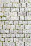 路面石头 库存图片