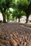 路面石头 库存照片