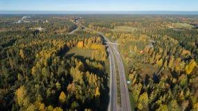 路鸟瞰图在美丽的秋天森林美好的风景的与沥青农村路,与红色和橙色叶子的树 库存照片