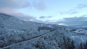 路鸟瞰图通过雪杉木森林在冬天 射击 鸟瞰图深刻的冬天农村国家风景飞行 股票视频