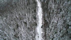 路鸟瞰图通过雪杉木森林在冬天 ?? 鸟瞰图深刻的冬天农村国家风景飞行 股票录像