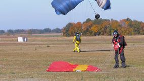跳伞运动员飞行与降伞和登陆在地面上 股票视频
