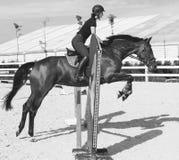 跳在套头衫圆环的一匹马的妇女 免版税库存图片