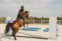 跳在套头衫圆环的一匹马的妇女 库存图片