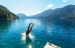 跳在水中 免版税库存图片