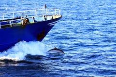 跳接近fishi8ng小船的弓的海豚 免版税库存图片