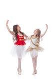 跳舞在对的美丽的年轻芭蕾舞女演员 免版税库存图片