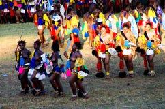 跳舞在他们的国王的Lobamba,斯威士兰Umhlanga里德舞蹈的传统服装的亦称妇女 免版税库存照片