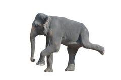 跳舞大象 免版税库存照片