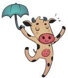 跳舞母牛 库存图片